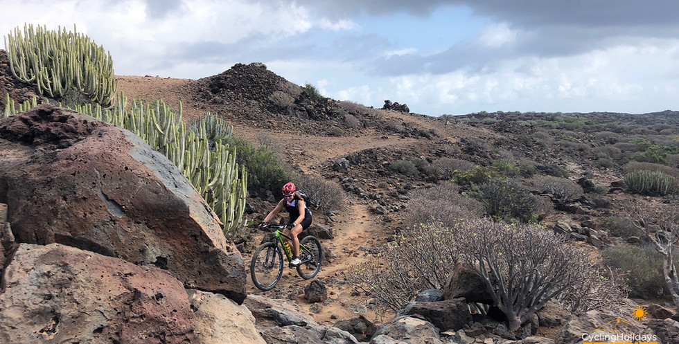 single track Tenerife.jpg