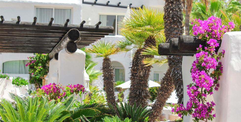 Jardin_Tropical_31.jpg