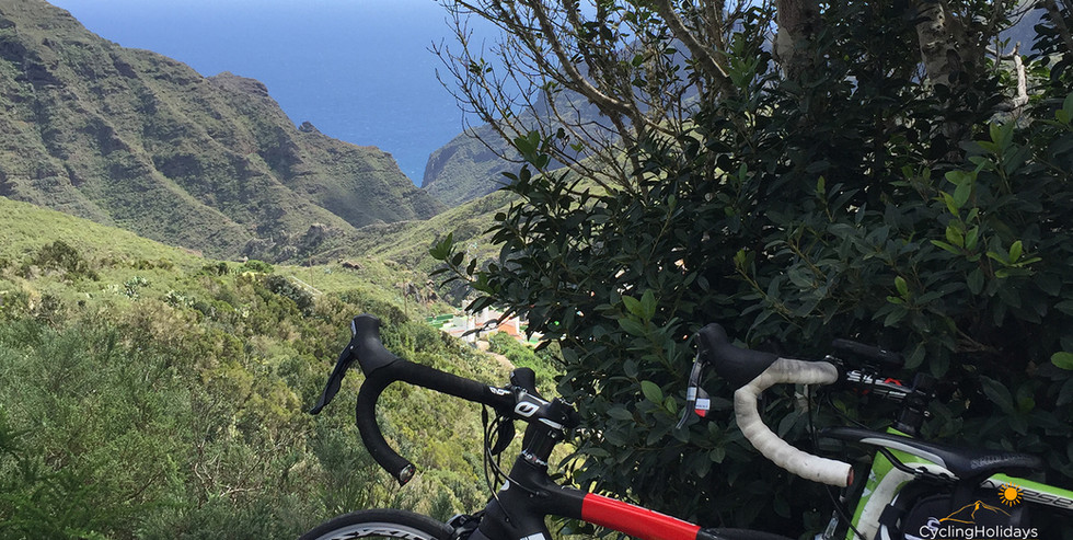 anaga road bike tour.jpg