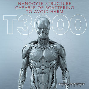 Nanocytes