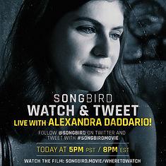 Songbird Watch & Tweet