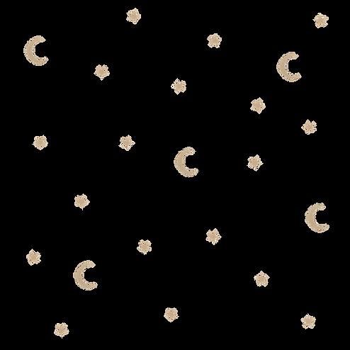 the sleep nanny - background transparent