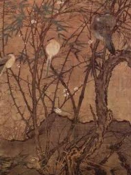 Intermédiaire-El Cants del Ocells