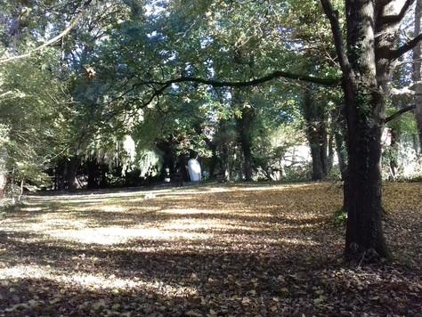 L automne au Domaine Pastel