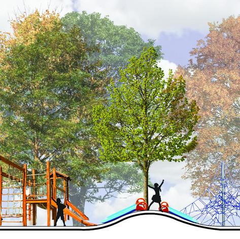 Centennial Park - Bathurst