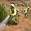 imagen tragsa brigada contra incendios gestión de equipos motivación y liderazgo