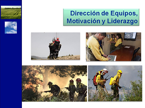 curso gestión de equipos motivación y liderazgo