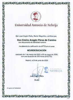 diploma-neuroeducaci%C3%83%C2%B3n-Anebri