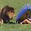 imagen de león con campista estrés agudo