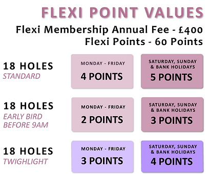 flexi_membership_points_table.png