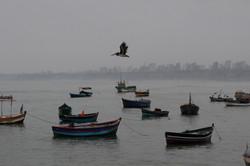 Lima10