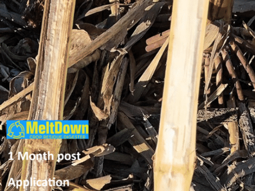 Biodyne Meltdown - Crop Residue Digestive