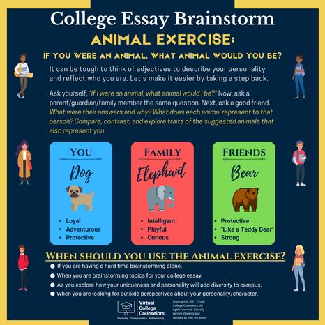 Essay Brainstorming: Animal Exercise