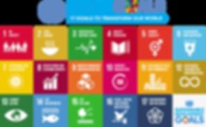 SDGs .png