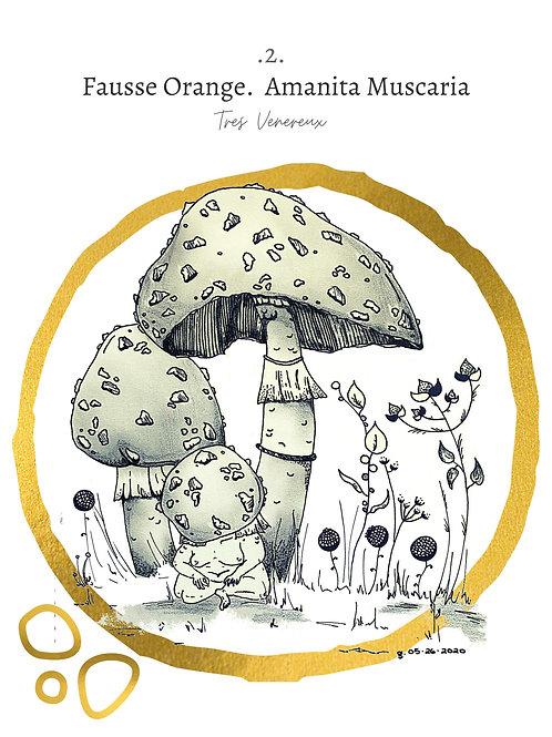 (Large) Fausse Orange - Mushroom Print