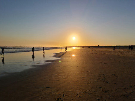 5 must-do family-fun activities around Central Coast & Port Stephens, NSW