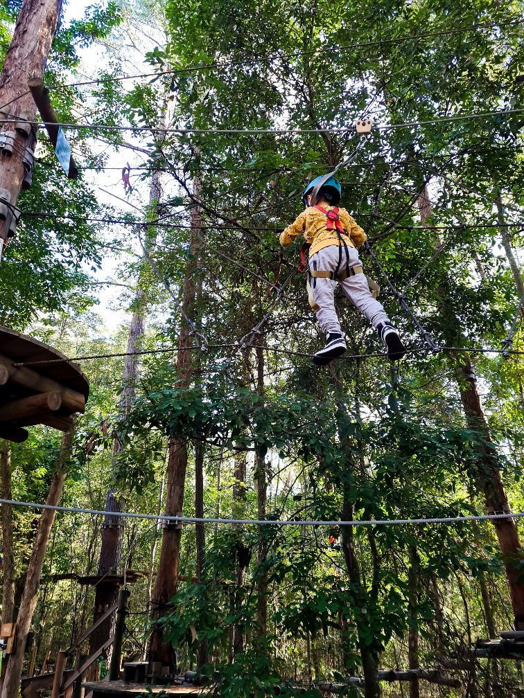 Likable Kids' Stuff | likable.com.au | TreeTop Adventure Park Central Cost | Fun Family Holiday Activity