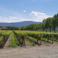Frind winery entrance