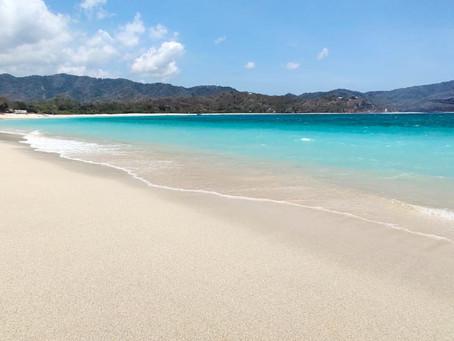 Whale sharks, waterfalls and white sand beaches :  Bali to Sumbawa overland.