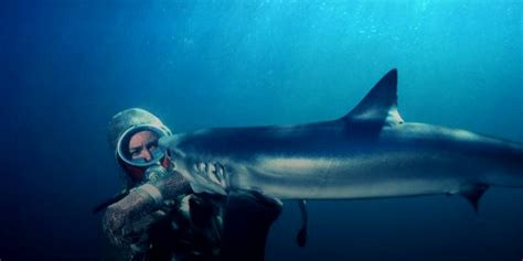 shark diving penida women