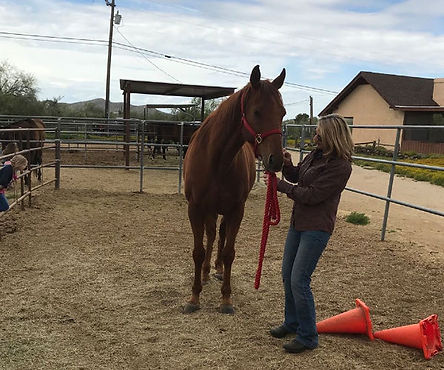 Lee's Gold with Adopter Nancy