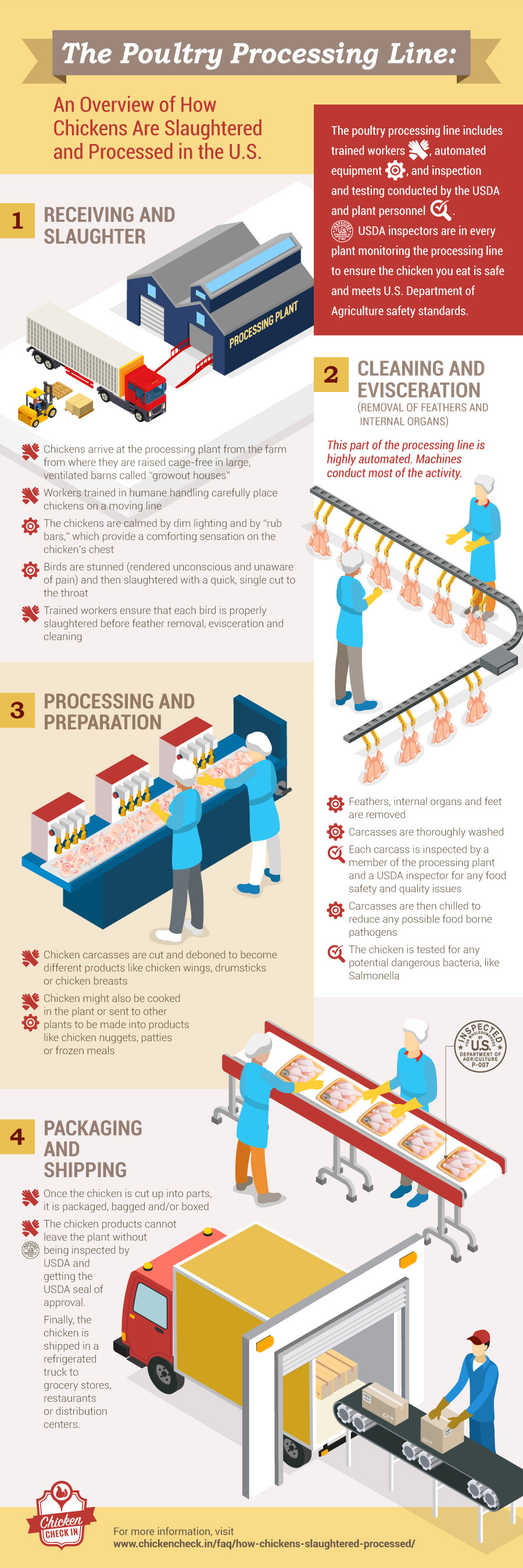 The Poultry Processing Line (Infographic)