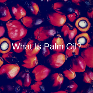 What Is Palm Oil?