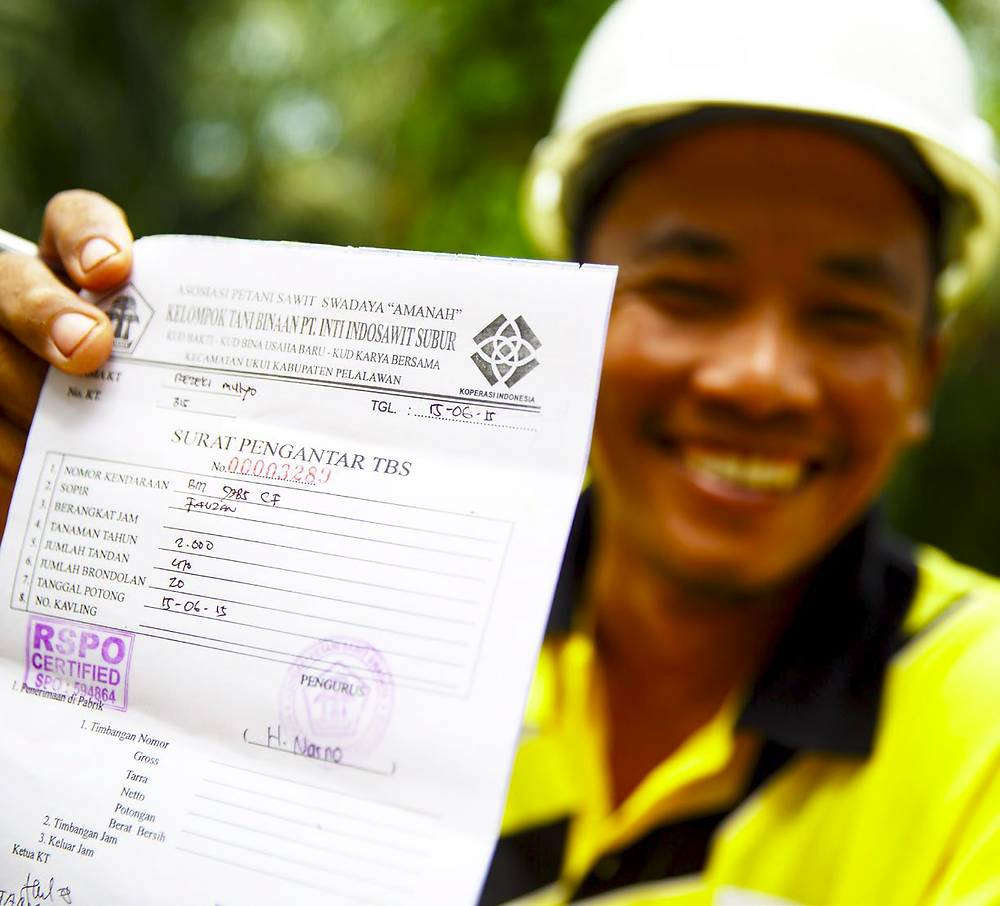 Certified Sustainable Palm Oil