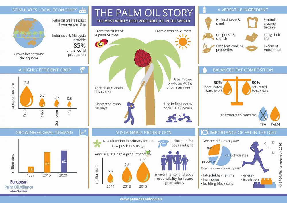 The Palm Oil Story (Infographic)