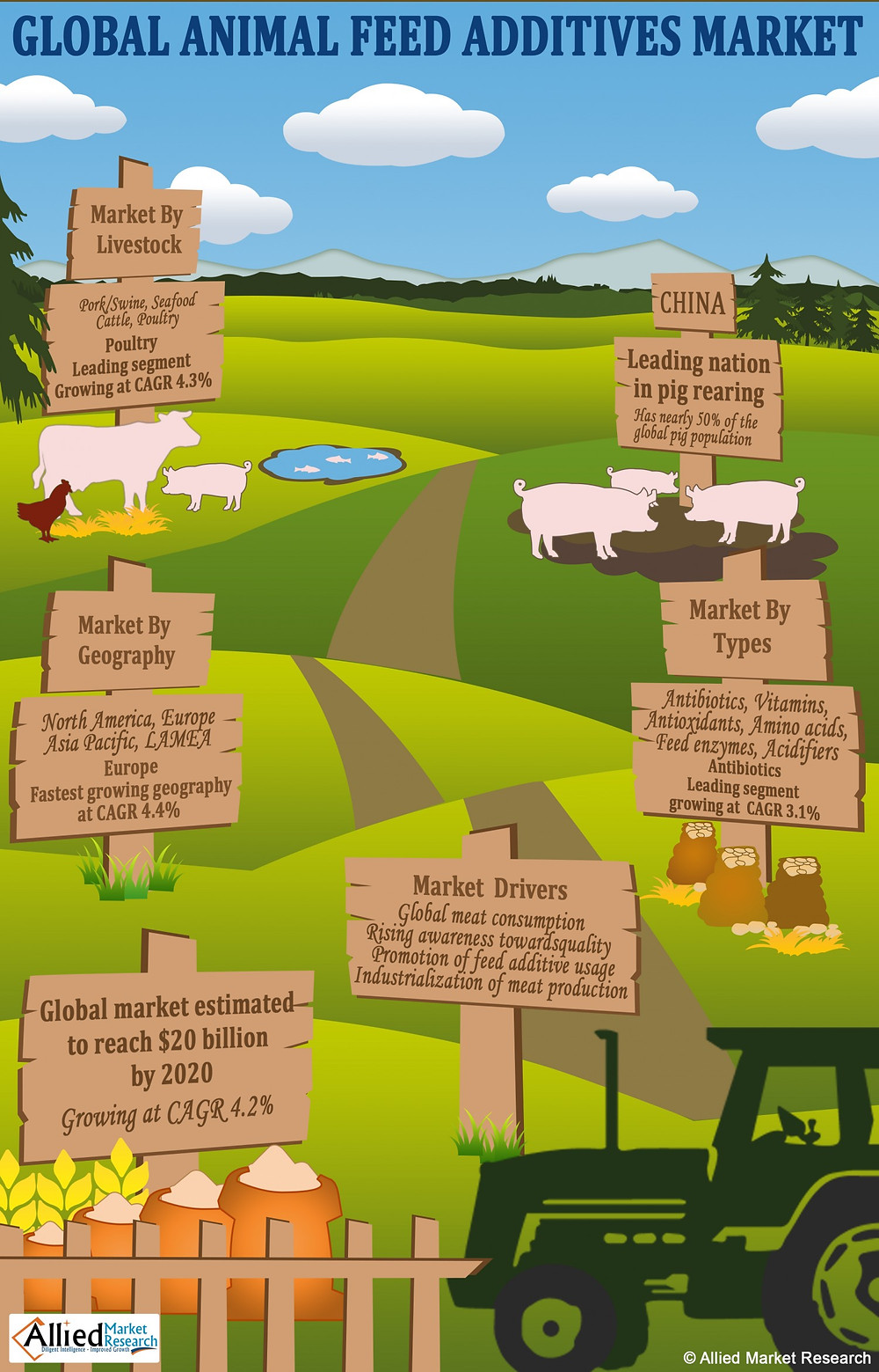 Global Animal Feed Additives Market (Infographic)