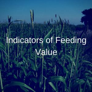 Indicators of Feeding Value