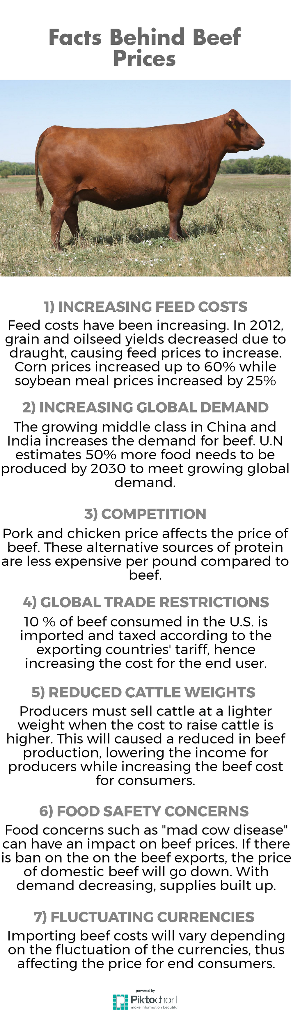 Facts Behind Beef Prices