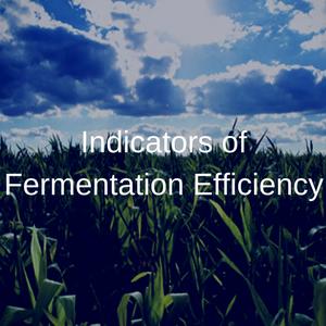 Indicators of Fermentation Efficiency