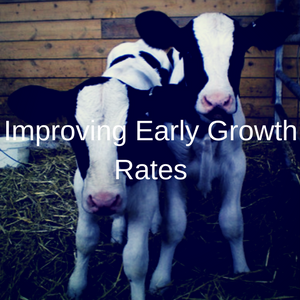 Improving Early Growth Rates