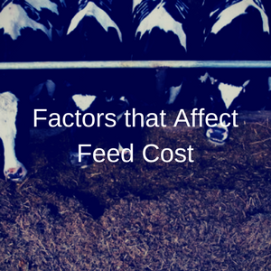 Factors Affecting Feed Cost