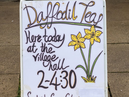 Daffodil Teas go from strength to strength!