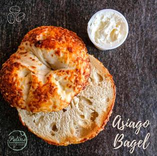 Asiago Bagel