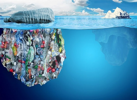 Facts About Plastic Pollution