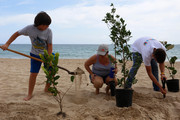 Reforestation is one of the most popular programs of Para la Naturaleza.