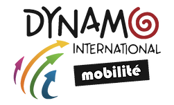 Logo de Dynamo International Mobilité
