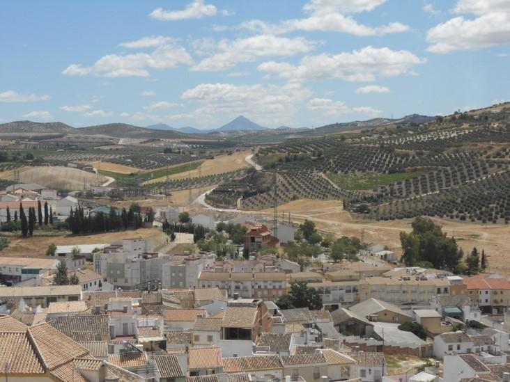 SVE de 6 mois en Andalousie, Espagne