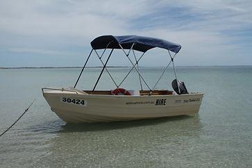 FISHSEEKERFB2.JPG