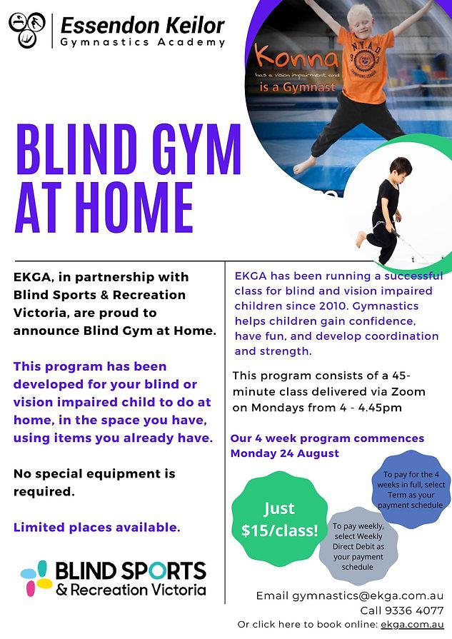 Online Blind Gym 2020.jpg
