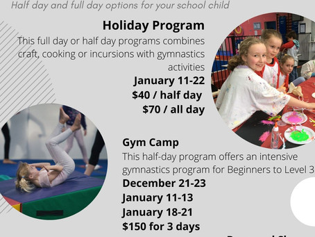Holiday programs and Gymcamps