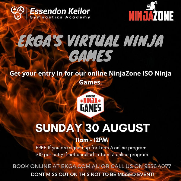 Ninja Games Online.jpg