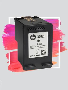 HP 307.jpg