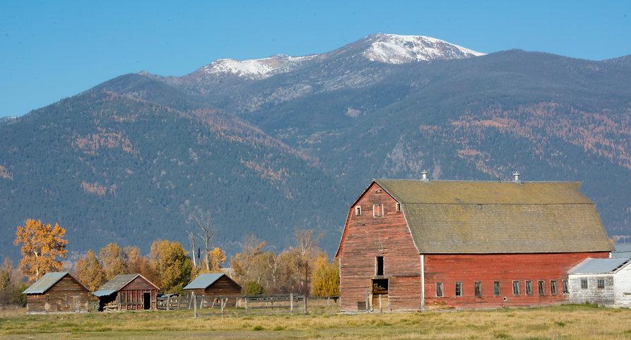 Landscape barn 4358.jpg