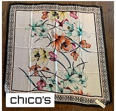 chicoscarf.jpg