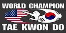 worldchampionshiptaekwondosmall.jpg