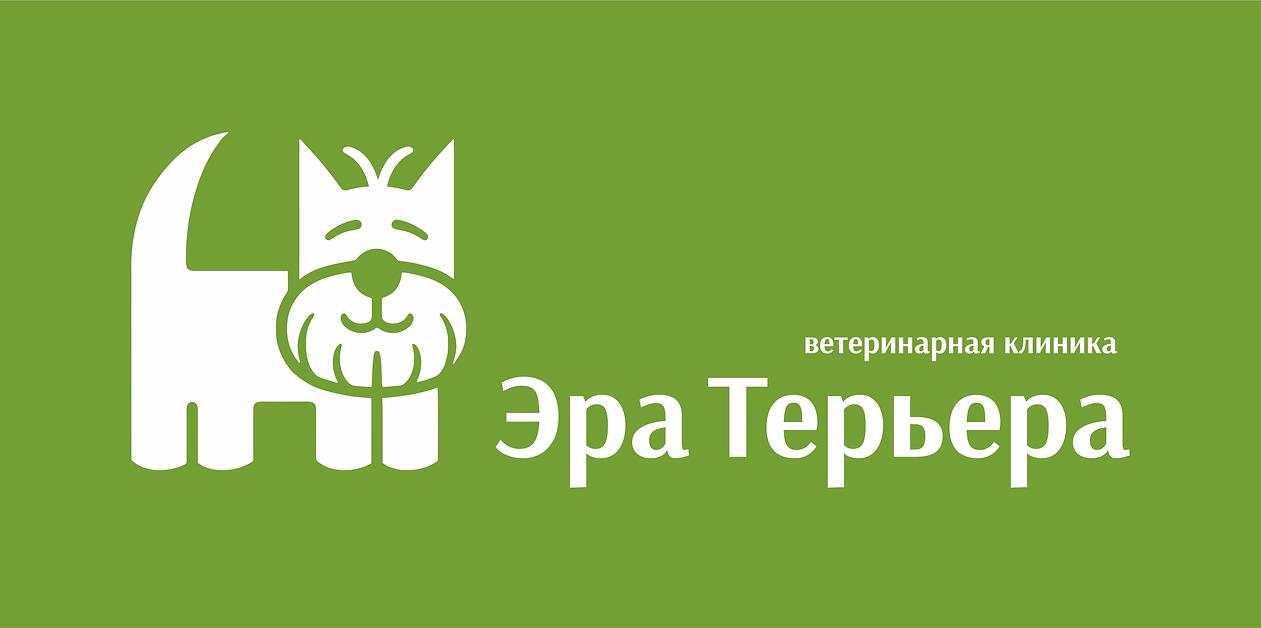 логотип клиники айдентика фирменнй стиль логобук брендбук заказать логотип разработа логотипа в москве logo студия дизайна паровоз создание логотипа логотипы